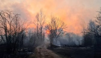 Smoke rises from a forest fire in the exclusion zone around the Chernobyl nuclear power plant